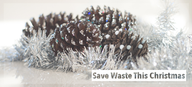 Save Waste This Christmas